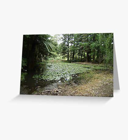 Lake, Rotary Park Greeting Card