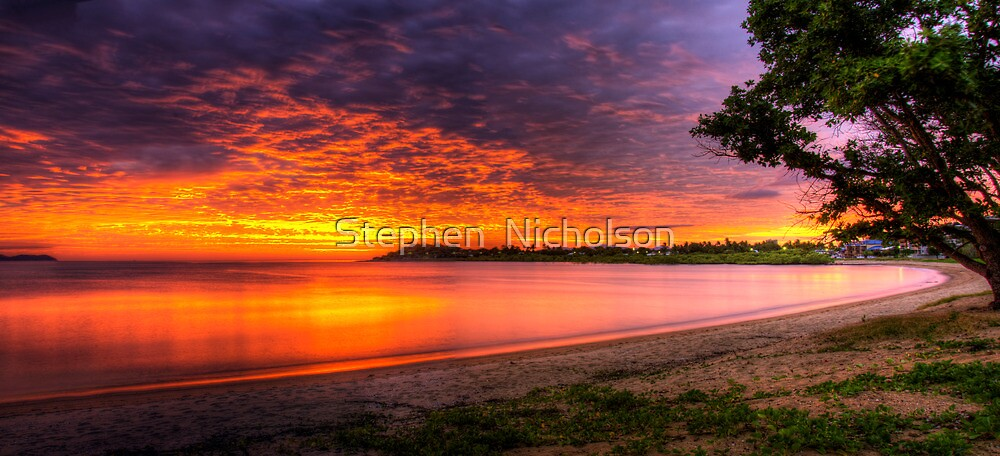 Rose Bay sunrise by Stephen  Nicholson