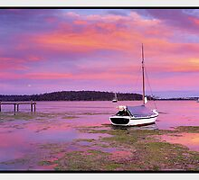 Sailor's Delight, St Helens TAS by Chris Munn