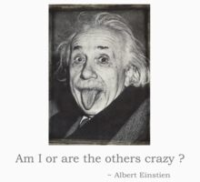 Am I or are the others crazy by Paisleypatches