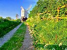Jill Windmill - HDR by Colin  Williams Photography
