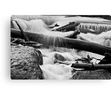 Twigs, water and rocks Canvas Print