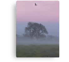 Misty Morning (1), Cheshire Canvas Print