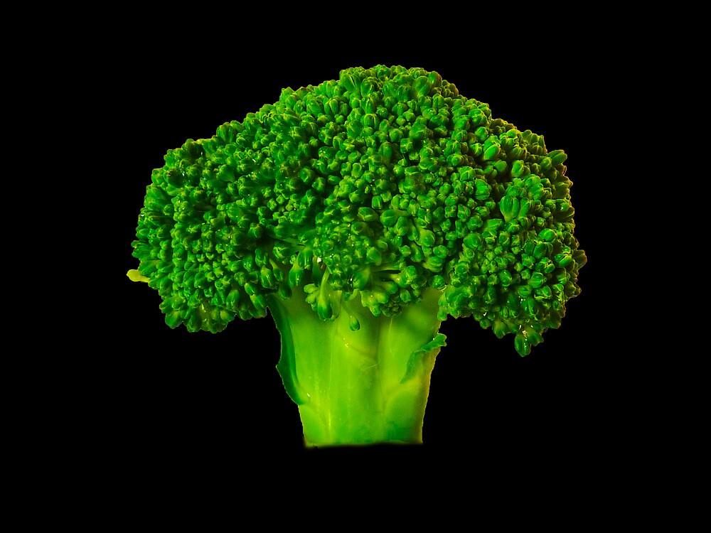 Broccoli by Sharon Brown