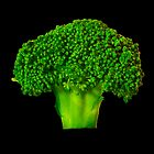 Broccoli by PollyBrown