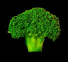 Broccoli by Sharon Brown