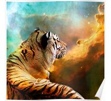 Tiger and Space Poster