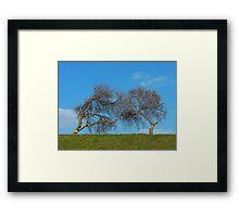 Kissing Trees Framed Print