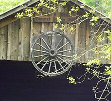 Wagon Wheel by cynthia greathouse