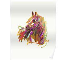 Horse true colours  Poster