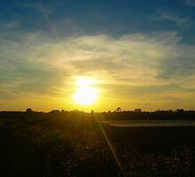 Bull Island Sunset by Patrick Horgan
