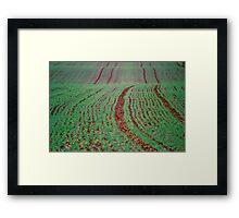 Green Field, Cheshire Framed Print