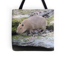 Baby Capybara Tote Bag