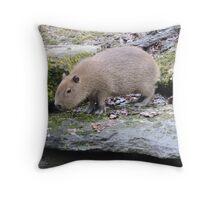 Baby Capybara Throw Pillow