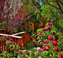 Cottage Rose Garden by Diana Graves Photography