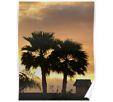 Two Palm Trees in the Sunset Poster
