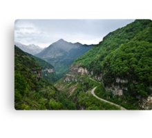 The way to natures heart Canvas Print