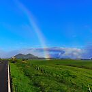 Road to Mauna Kea Hawaii by Richard  Leon