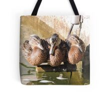 A Perch for Three Tote Bag