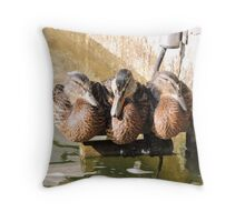 A Perch for Three Throw Pillow