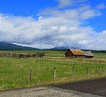 Idaho Open Range....Outside Cascade, Idaho by trueblvr