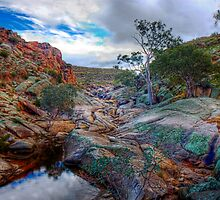 At The Top - Mannum Falls, Murraylands, South Australia by Mark Richards