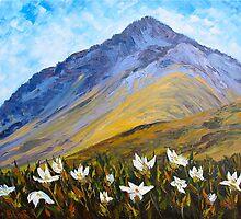 Mountain Daisies by HelenBlair