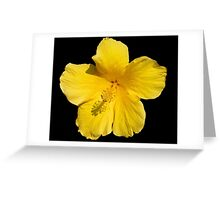 Luminous Yellow Hibiscus Greeting Card