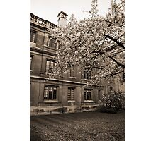 Clare College Cambridge Photographic Print