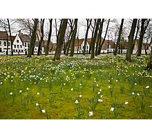 The Begijnhof (Beguinage) in Bruges, Belgium  Photographic Print