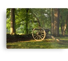 SHADED CANON Metal Print
