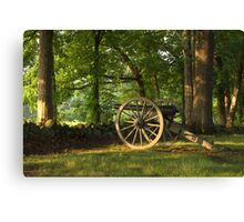 SHADED CANON Canvas Print