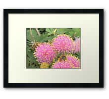 Little Person Bee Framed Print