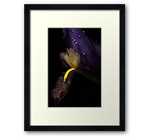 The Waterlily Framed Print