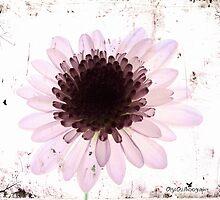 Floral virtue by Olga