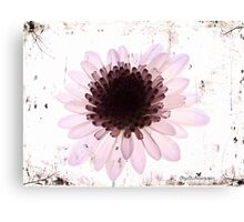 Floral virtue Canvas Print