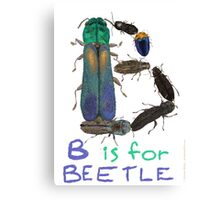 B is for Beetle Canvas Print