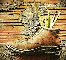 Old Boot? Plant Pot! by Maria  Gonzalez