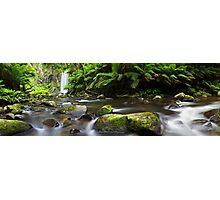 Hopetoun Falls, Otways, Great Ocean Road, Australia Photographic Print