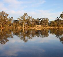 River Murray Reflections by Carole-Anne