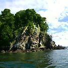 Island by cadellin