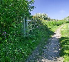 The open gate & beyond. by Kit347