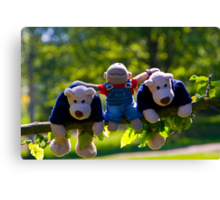 Monkey and the bears Canvas Print