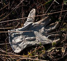 Glove 34 by Syd Winer