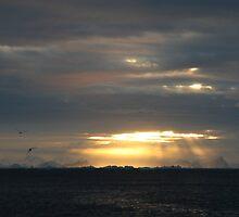 Antarctic Sunset by MagnuselMar