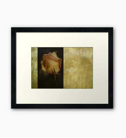 Vintage Rose Framed Print