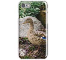 Duck in a garden. iPhone Case/Skin