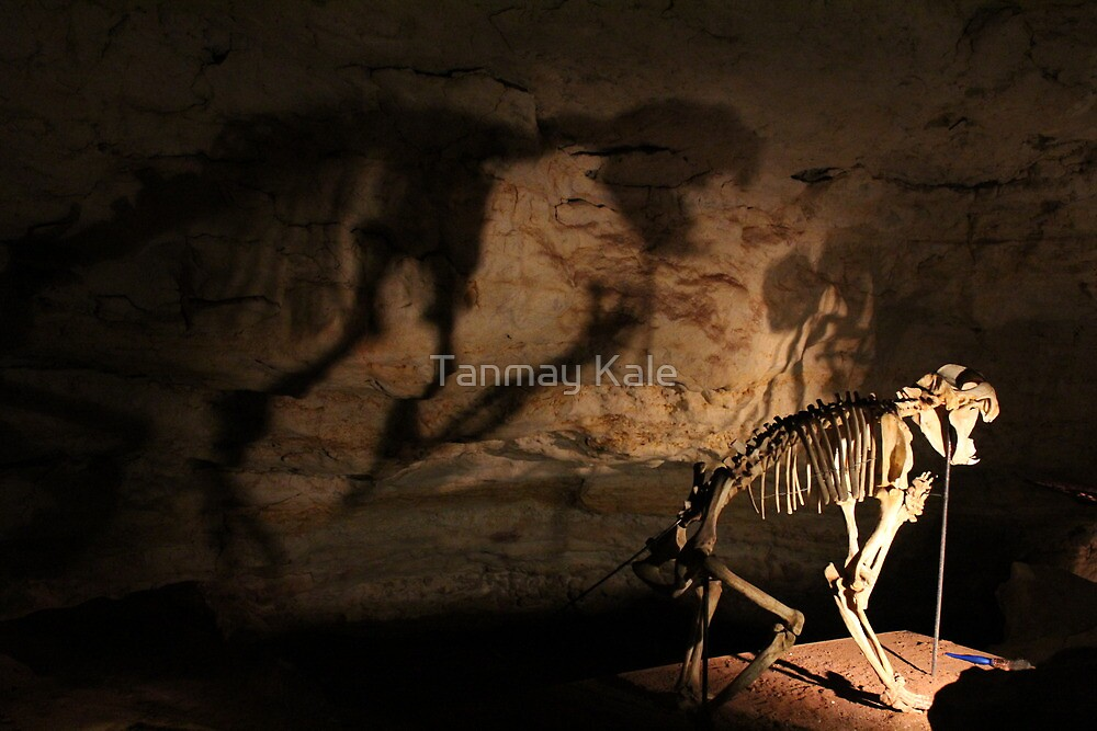 Speciman @ Naracoorte Caves - SA by Tanmay Kale