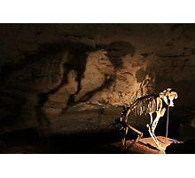 Speciman @ Naracoorte Caves - SA Photographic Print