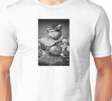 subconscious equilibrium Unisex T-Shirt